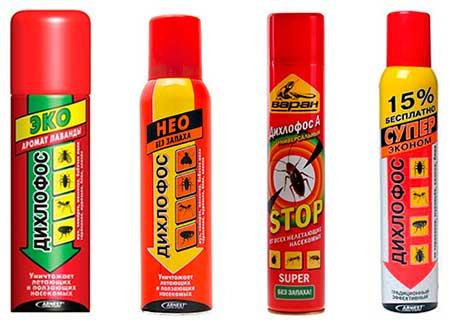 Эффективное средство от тараканов без запаха: спрей, дихлофос, ловушки