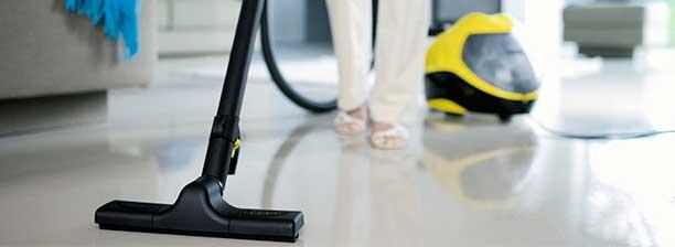 Уборка в квартире - профилактика появления мушек