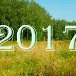 Клещи в Подмосковье — 2017 год