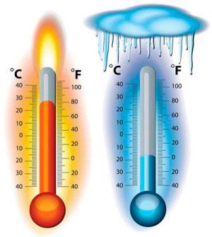 Воздействие экстремальной температурой на клещей