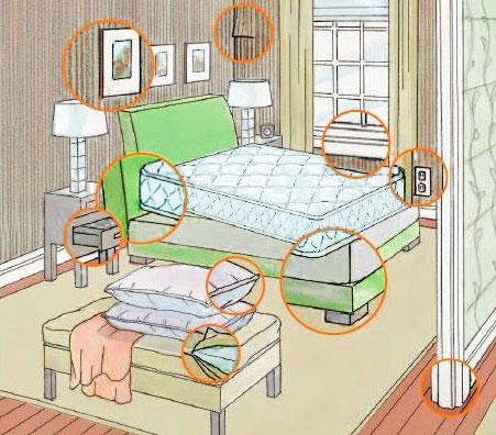 Где в квартире прячутся клопы?