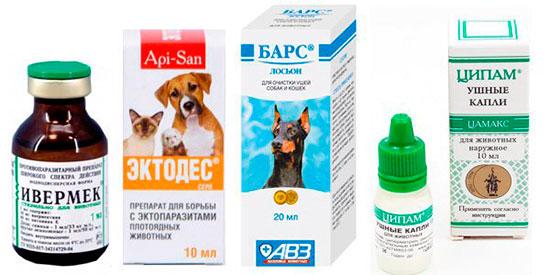 Препараты от отодектоза у кошек