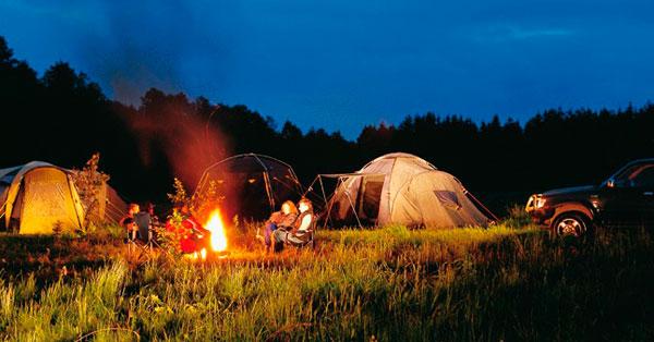 Расположите палатку подальше от муравейника