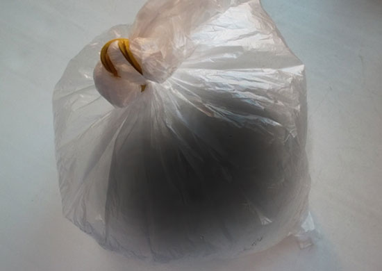 Осиное гнездо в пакете