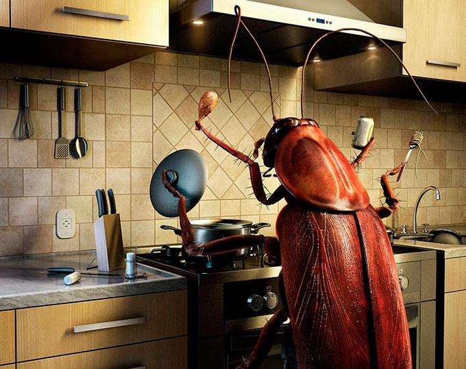 Почему опять появились тараканы в квартире