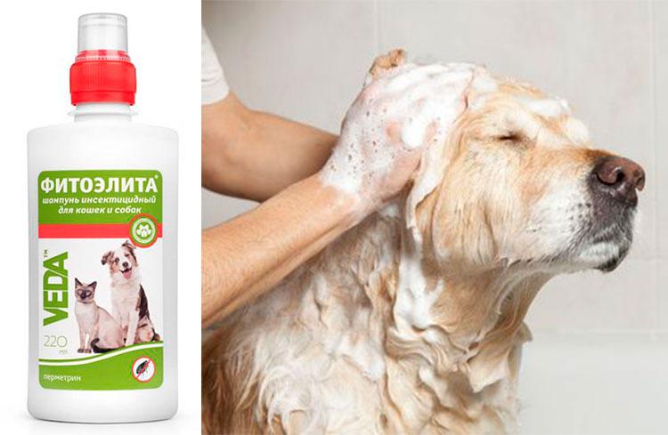 Шампунь Фитоэлита от блох для собак