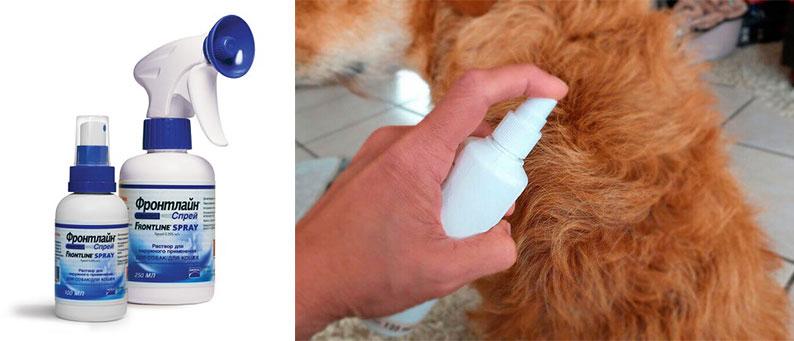 Фронтлайн спрей от блох для собак