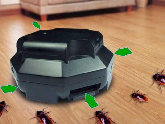 Ловушки для тараканов: обзор лучших и эффективных