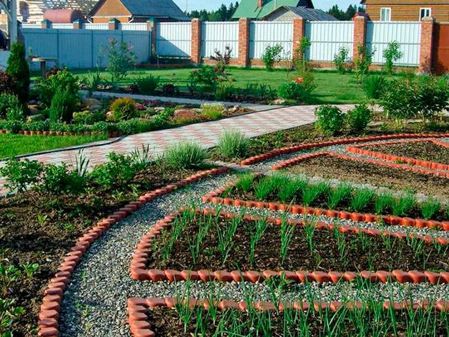Почему на дачном участке заводятся вредители сада и огорода?