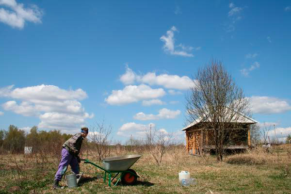 Весной проводите уборку на дачном участке