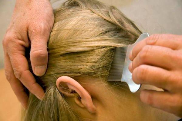 Вычесать волосы после применения Пара Плюс