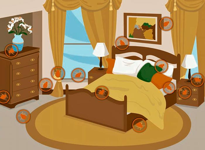 Как обнаружить клопов в квартире: где прячутся постельные клопы в постели?