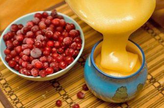 Рецепт клюква с медом против вшей и гнид - народные рецепты