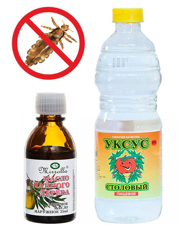 Уксус с маслом чайного дерева от вшей и гнид, лечение педикулеза дома