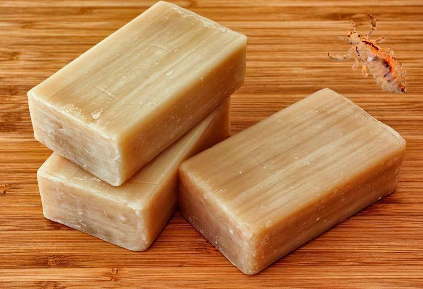 Хозяйственное мыло от вшей и гнид - отзывы и советы по применению