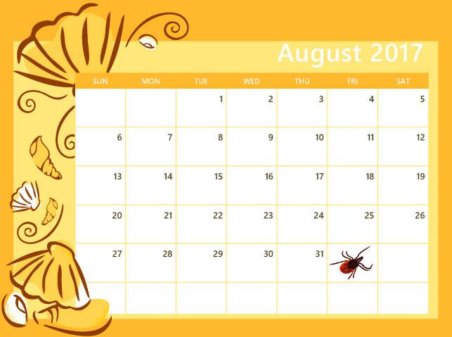 ежедневник календарь diary calendar  № 3205224 без смс